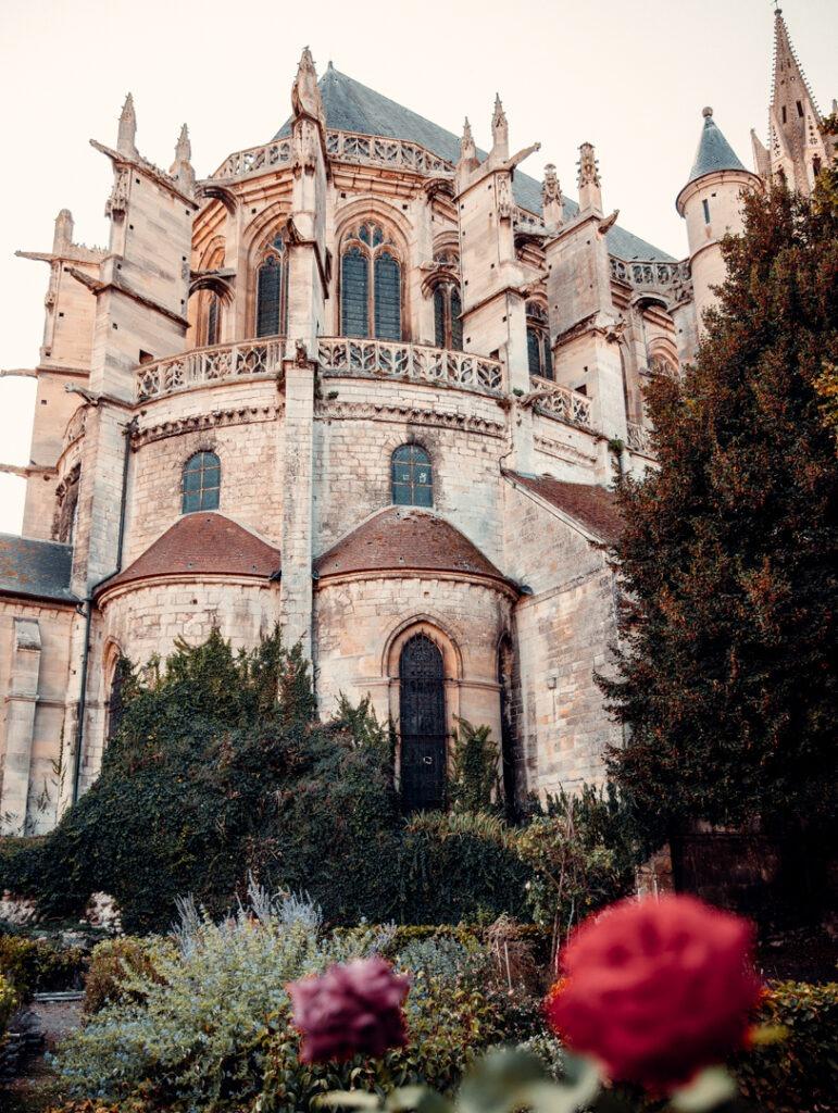 cathedrale-senlis-fleur